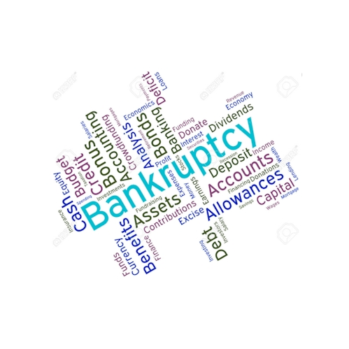 Bankruptcy and Debt Management